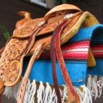 saddle03d